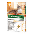 Advantage Cat Orange