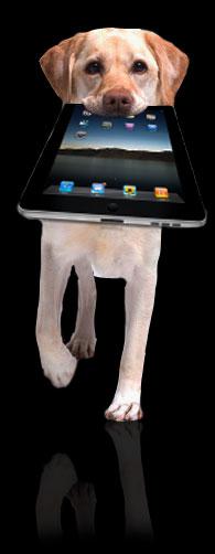 Mobile Dog