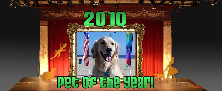 Pet of the Year 2010
