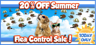 20% off Summer Flea Sale