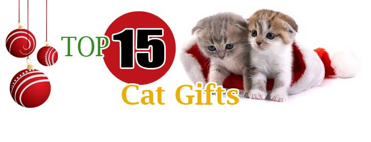 Top Gifts for cats