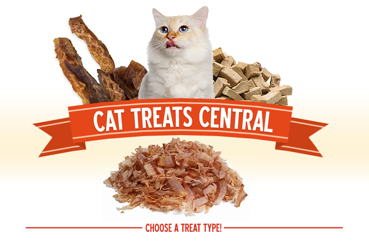Cat Treats Central