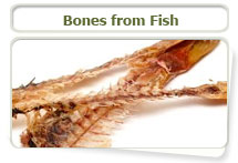 Fish bones can cause obstruction or laceration of the digestive system
