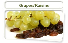 Grapes and raisins can be harmful to cats