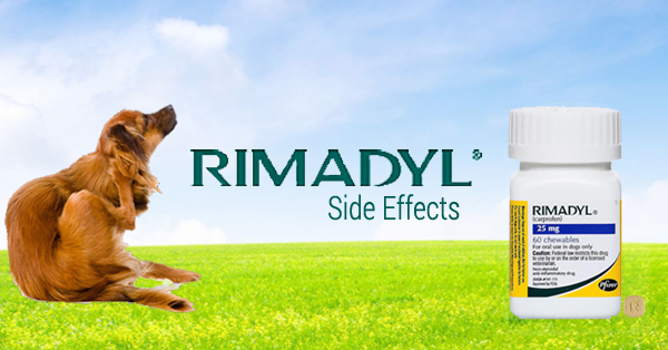 Rimadyl Side Effects Entirelypets Pharmacy
